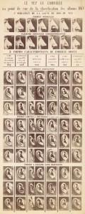 2015316162920872-alphonse-bertillon-classificatiesysteem-voor-neus-en-oor-van-de-dkv-albums-service-de-lidentite-judiciaire-1903.-fotomuseum-provincie-antwerpen