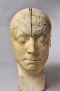 Anoniem,-Frenologisch-hoofd,-eerste-helft-19de-eeuw.-Musée-Flaubert-et-d'Histoire-de-la-Médecine,-Rouen