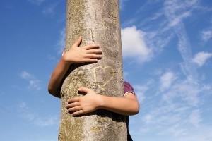 J'ai un arbre dans mon coeur © Hjalmeida
