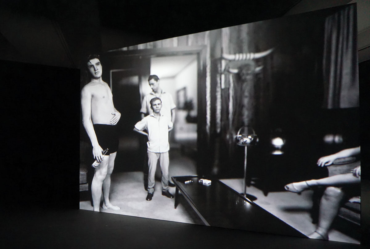 Vue d'exposition, DAVID CLAERBOUT, King (After Alfred Wertheimer's 1956 Picture Of A Young Man Named Elvis Presley), 2015-2016