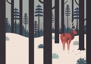 Deer Woods Trees Forest