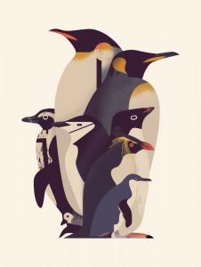 Parade of Penguins / Les merveilles de la nature