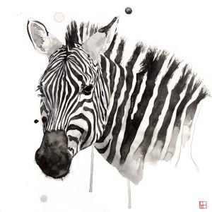 Wildlife - Zebra