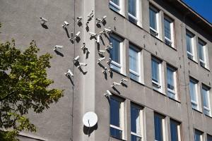 Nest 03 (c) Jakub Geltner