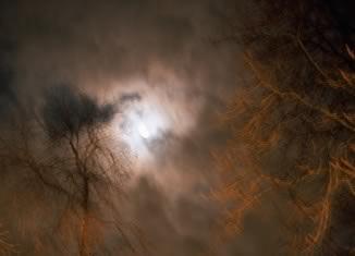 Full moon over Bois de Vincennes, Paris, 2004 © Nan Goldin