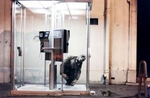 M 02 EPE Derriere La Vitre 1997© Ernest Pignon Ernest Courtesy Galerie Lelong & Co