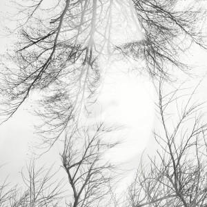 Shadow - Eden I (c) Laurence Winram
