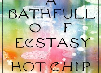 Hot Chip, A Bath Full Of Ecstasy
