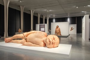 © Ron Mueck Scottish National Gallery of Modern Art. Purchased with the assistance of the Art Fund 2007
