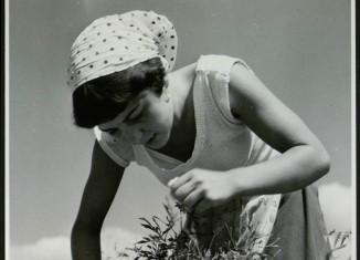 © Musée international de la parfumerie de Grasse