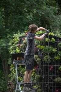 Joost Emmerik, Chasse aux fleurs, 2019, Festival international de jardins, Hortillonnages Amiens © art & jardins, Hauts-de-France - photo Yann Monel
