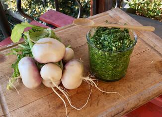 Pesto aux fanes de navet (c) Louise Browaeys